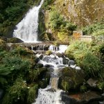Triberg Waterfalls