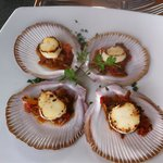 Delicious baby scallops with ragu
