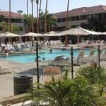 Foto di Hilton Palm Springs Resort