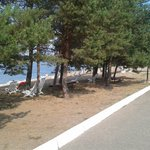 Φωτογραφία: Emmaus Volga Club Country Hotel