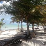 Φωτογραφία: Eden Village Watamu Beach