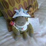 Monkey in his party hat made by Lesley.