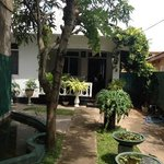 The Nice and Friendly Seahouse Guest House