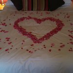 Petals put on our bed for wedding night room 4