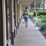 Φωτογραφία: Rosen Inn at Pointe Orlando