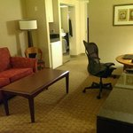 صورة فوتوغرافية لـ ‪Embassy Suites Atlanta - at Centennial Olympic Park‬