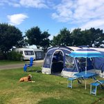 Good size pitches with sea views