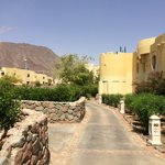 Taba Heights Marriott Red Sea Resort resmi