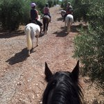 Photo de Sierra Pelada Horse Riding School