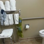 Microtel Inn & Suites by Wyndham Michigan City의 사진