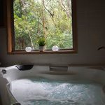 The Mouses House Rainforest Retreat照片