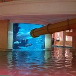 Foto de Golden Nugget Hotel