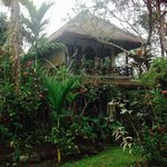 Foto de The Ubud Village Resort & Spa