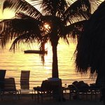 Billede af Marriott Key Largo Bay Beach Resort