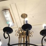Large spiders and cobwebs cover the light fittings
