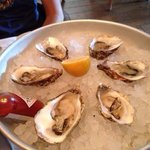 Oysters very fresh