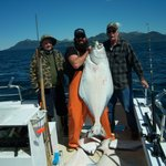 Tim Berg's Alaskan Fishing Adventures Accommodationの写真