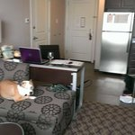 Residence Inn Boston Logan Airport/Chelsea照片