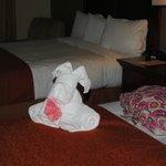Foto de Country Inn & Suites Tampa East