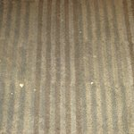 The carpet in the lobby area