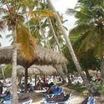 Photo of Dreams La Romana