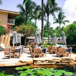 LaPlaya Beach & Golf Resort Naples照片