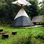Foto de Woodland Tipis and Yurts