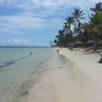 Bilde fra Catalonia Bavaro Beach, Casino & Golf Resort