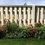 Flowers and privacy fence