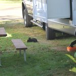 Foto de Pleasant Valley RV Park