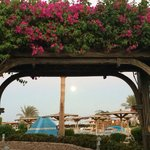 Sea Club Resort - Sharm el Sheikhの写真