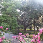 View of Forsyth Park from the Veranda