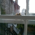 Broken sash window