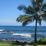 Φωτογραφία: Sheraton Kauai Resort