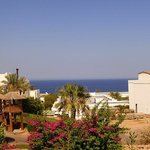 Foto de Poinciana Sharm Resort & Apartments