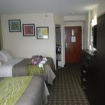 Comfort Inn Downtown Charleston Foto