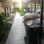 Foto de Hampton Inn San Diego-Sea World/Airport Area