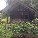 Garden Bungalow at Park HQ