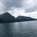 Major Marine Tours - Kenai Fjords Cruise Foto