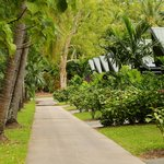 Foto de Palm Bungalows