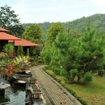 We offer 12 different kind of wooden bungalows