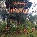 2 person tree house we stayed in w large bathroom