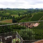 Views of surrounding vineyards