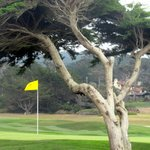 Spyglass Hill Golf Course, Pebble Beach, Ca