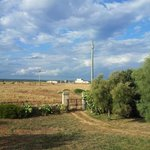 Villa Boschetto B&B - Apartments의 사진