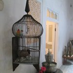 Photo de Riad Malaika