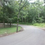 road in rv campground-no neighbors on this side of our site!
