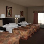 Φωτογραφία: Ramada Drumheller Hotel and Suites