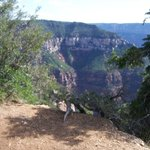 Grand Canyon by Red Rock Canyon Tours
