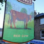 The Red Cow Foto